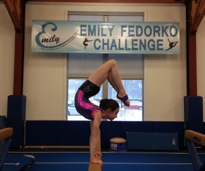 Darien Gymnastics Meet